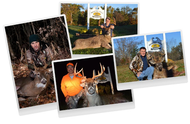 Mound Hill Whitetail - Ohio Whitetail - Ohio Hunting